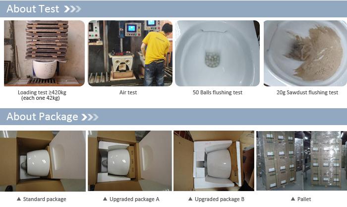 CT2039 Wall Toilet Sanitary Clean Sense Of Style