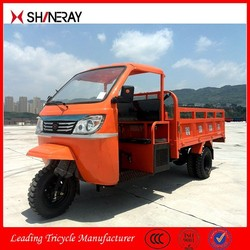 Made in China Manufacturer OEM 250Cc Trike Motorcycle/3 Wheel Trike Car/Covered Trike