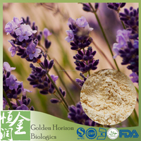 Great Quality Lavender Extract Price