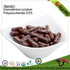 Healthy gamoderma reishi mushroom extract Triterpene softgel
