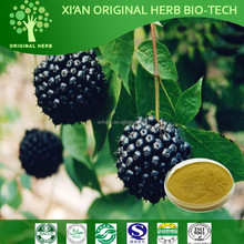 100% Natural Siberian Ginseng Extract