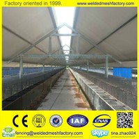 Hot sale welded wire mesh fence panel animal cages,mink cage,bird cage for sale