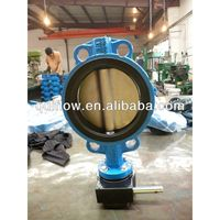 Gear operated wafer type butterfly valve concentric design