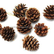 Natural pine cone for christmas decoration