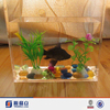 Made in china transparent acrylic fancy fish tank wholesale for aquarium fish shop