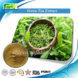 100% Natural Green Tea Extract. 20%-98% Tea Polyphenol. 20%-80% Catechins. 20%-60% EGCG