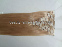 Fashion European Clip Hair,Clip in Hair,Clip on hair