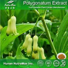 100% Natural Solomonseal Rhizome P.E., Solomonseal Rhizome Powder