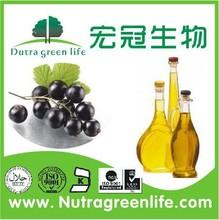 Food Grade Black Currant oil/Black Currant Seed Oil/Black Currant P.E