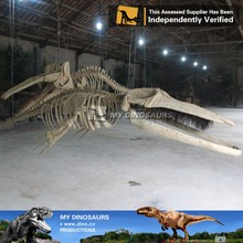 N-P-Y-91-animals fossil replica life size resin baleen whale skeleton