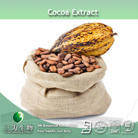 20% Theobromine Powder ( Cocoa Seed Extract) Supplied By 3W Exporter