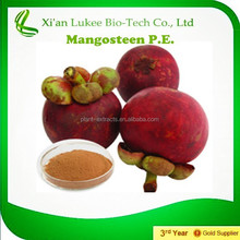 Mangosteen Extract powder 100% (PURE Premium Grade ) in BULK