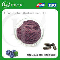 OEM Service Acai Berry Extract Powder