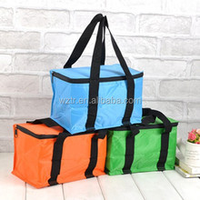 Insulated effect cooler picnic tote bag for frozen food