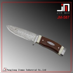 Damascus steel Camping Knife Chef Knife with Wood Handle