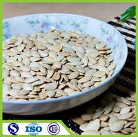 Chinese raw new wholesale pumpkin shine skin seeds