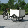 Electric passenger tricycle scooter,cargo trike, rickshaw,