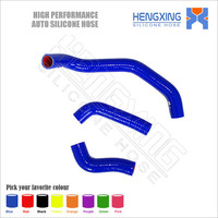 Motorcycle silicone rubber radiator hose kit for Kawasaki ZZR1200 ZX 1200 C 2004