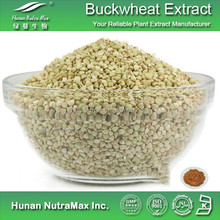 100% Natural Tartary Buckwheat Extract,Polygonum Fagopyrum Extract, Chinese Buckwheat Extract