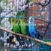 Factory Offer Folding Wire Bird Cage