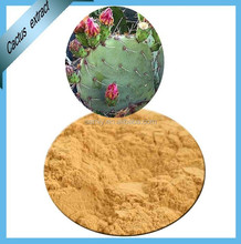 Natural weight loss Hoodia Gordonii Powder / Extract 4:1~20:1 HPLC 98%