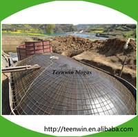 Teenwin biogas septic tank