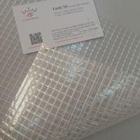 PVC transparent mesh