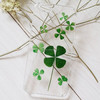 Dry pressed natural real flower phone cover case for mobile phone case, cell phone case, for iphone case