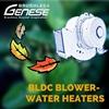 Brushless DC Motor Air blower