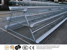 selling chicken laying hen cages/ layer cage
