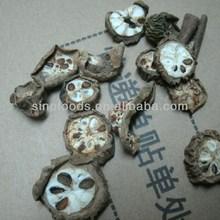 raw medicine dry akebiae bulk dried akebiae
