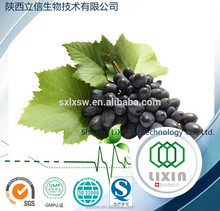 High Quality Natural water soluble grape seed extract(high orac value).organic grape seed extract 95%