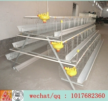 Professional autoamtic poultry cage egg layer chicken cage for sale