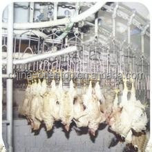 equipment for chicken factory poultry slaughtering equipment