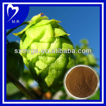 100% Natural Hop Flower Plant Extract