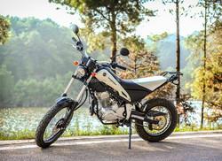 Hot Sale 200cc Dirt Bike, 250cc china motorcycle, Dirt Bike 250cc Cheap Motorcycle