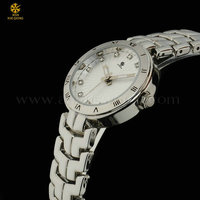 2014 custom immersion silver plating watch for women