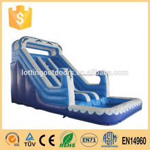 Dolphin Inflatable Big Water Slides for Sale/cheap inflatable bumper car