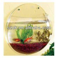China acrylic transparent wall oval indoor fish tank