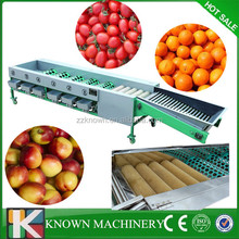 Full automatic apple.orange/pitch/pear/tomato cleaning/waxing/sorting machine
