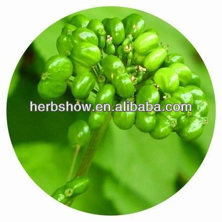 Pura semillas de Ginseng americano para el cultivo de