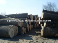White European Ash Veneer logs