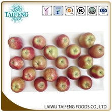 Trade Assurance Fresh Red Star Apple exporter