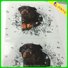 Custom vinyl sticker printing, large size wall stickers, static window decal