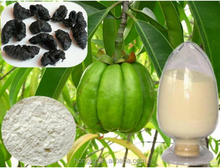 Garcinia Cambogia Extract Suppliers