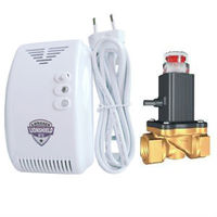 High-Qaulity Brass Gas Valve For Home Use