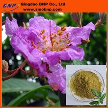 sample free corosolic acid,1005natural banaba leaf powder,banaba leaf extract