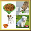 flexible soft novelty silicone collapsible cute pet dog bowl