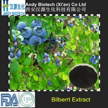 Pure Natural High Quality Anthocyanidins 10% Bilberry Extract Powder