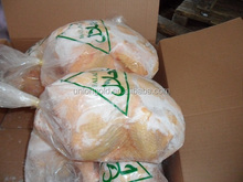 HALAL whole Frozen chicken for export